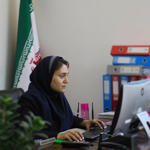 Parisa Najafi 2 فروشگاه آنلاین لوازم یدکی|تاکسینپارت